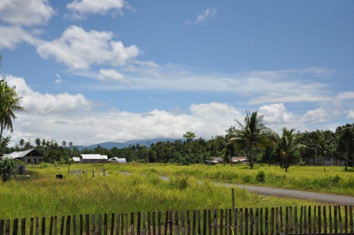 Desa sebagai hinterland